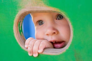 baby-3385661_1920
